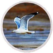 Gull Inflight Round Beach Towel