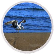 Gull On The Beach  Round Beach Towel