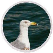 Gull Profile Round Beach Towel