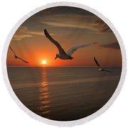 Gulls Flying Towards The Sun Round Beach Towel