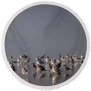 Gulls On A Foggy Beach Round Beach Towel