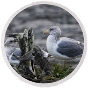 Gulls Round Beach Towel