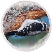 Hairy Woodpecker 2 Round Beach Towel