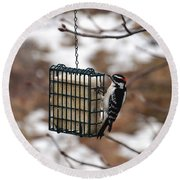 Hairy Woodpecker 2 Round Beach Towel
