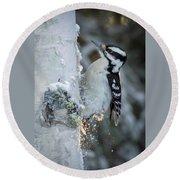 Hairy Woodpecker Female Round Beach Towel