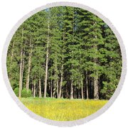 Half Dome Meadow Round Beach Towel