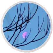 Half Moon Through The Trees Round Beach Towel