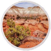 Hanging On The Cliff At Kodachrome Basin State Park Round Beach Towel