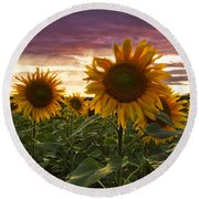 Happiness Is A Field Of Sunflowers Round Beach Towel