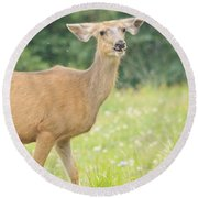 Happy Deer Round Beach Towel