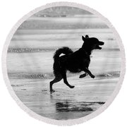 Happy Dog Black And White Round Beach Towel