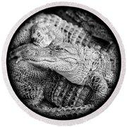 Happy Gator Black And White Round Beach Towel