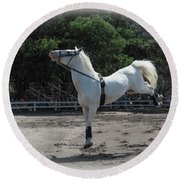 Happy Horse Round Beach Towel