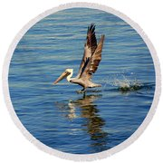 Happy Landing Pelican Round Beach Towel