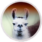Happy Llama Round Beach Towel by Myrna Migala