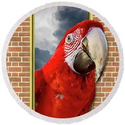 Happy Red Parrot Round Beach Towel