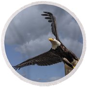 Hard Banking Eagle Round Beach Towel