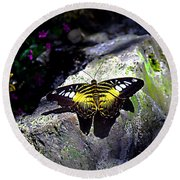 Hard Landing--clipper Butterfly Round Beach Towel