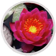 Hardy  Day Water Lily Round Beach Towel