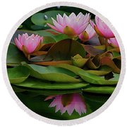Hardy Pink Water Lilies Round Beach Towel