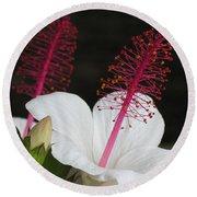 Hawaii Flower Round Beach Towel