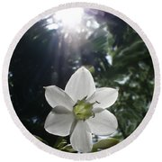 Hawaiian Flower Round Beach Towel