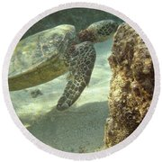 Hawaiian Green Sea Turtle Round Beach Towel