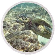 Hawaiian Green Turtle Round Beach Towel