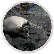 Hawaiian Monk Seal Ilio Holo I Ka Uana Round Beach Towel
