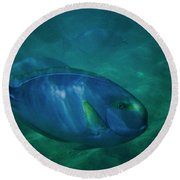 Hawaiian Tang Fish Round Beach Towel