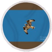 Hawk In Flight Round Beach Towel