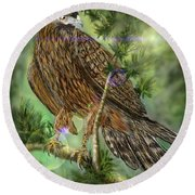 Hawk In The Evergreens Round Beach Towel by Darren Cannell