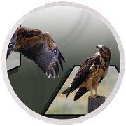 Hawks Round Beach Towel by Shane Bechler