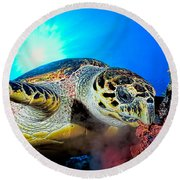 Hawksbill Turtle Round Beach Towel
