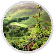 Hawthorn Branch With View To Wicklow Hills. Ireland Round Beach Towel
