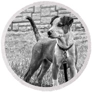 Hdr America Breed Round Beach Towel