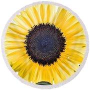 Hdr Sunflower Round Beach Towel