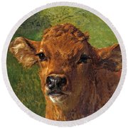 Head Of A Calf Round Beach Towel
