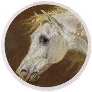 Head Of A Grey Arabian Horse  Round Beach Towel