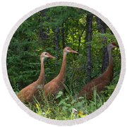 Headed For The Woods Round Beach Towel