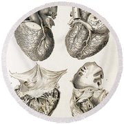 Heart, Anatomical Illustration, 1814 Round Beach Towel
