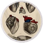 Heart, Anatomical Illustration, 1822 Round Beach Towel