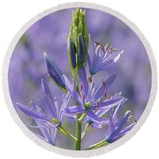 Heavenly Blue Camassia Round Beach Towel