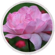Heavenly Pink Rose Round Beach Towel