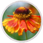 Heavenly Zinnia Round Beach Towel