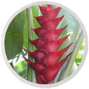 Heliconia Hot Flash Round Beach Towel
