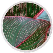 Heliconia Leaf Round Beach Towel