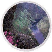 Hells Canyon Round Beach Towel