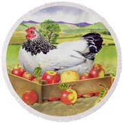 Hen In A Box Of Apples Round Beach Towel by EB Watts