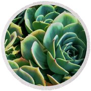 Hens And Chicks Round Beach Towel